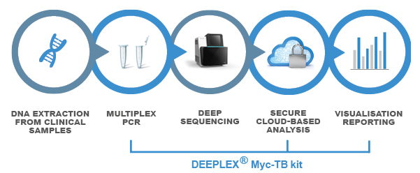 DEEPLEX MycTB SOLUTION steps 2